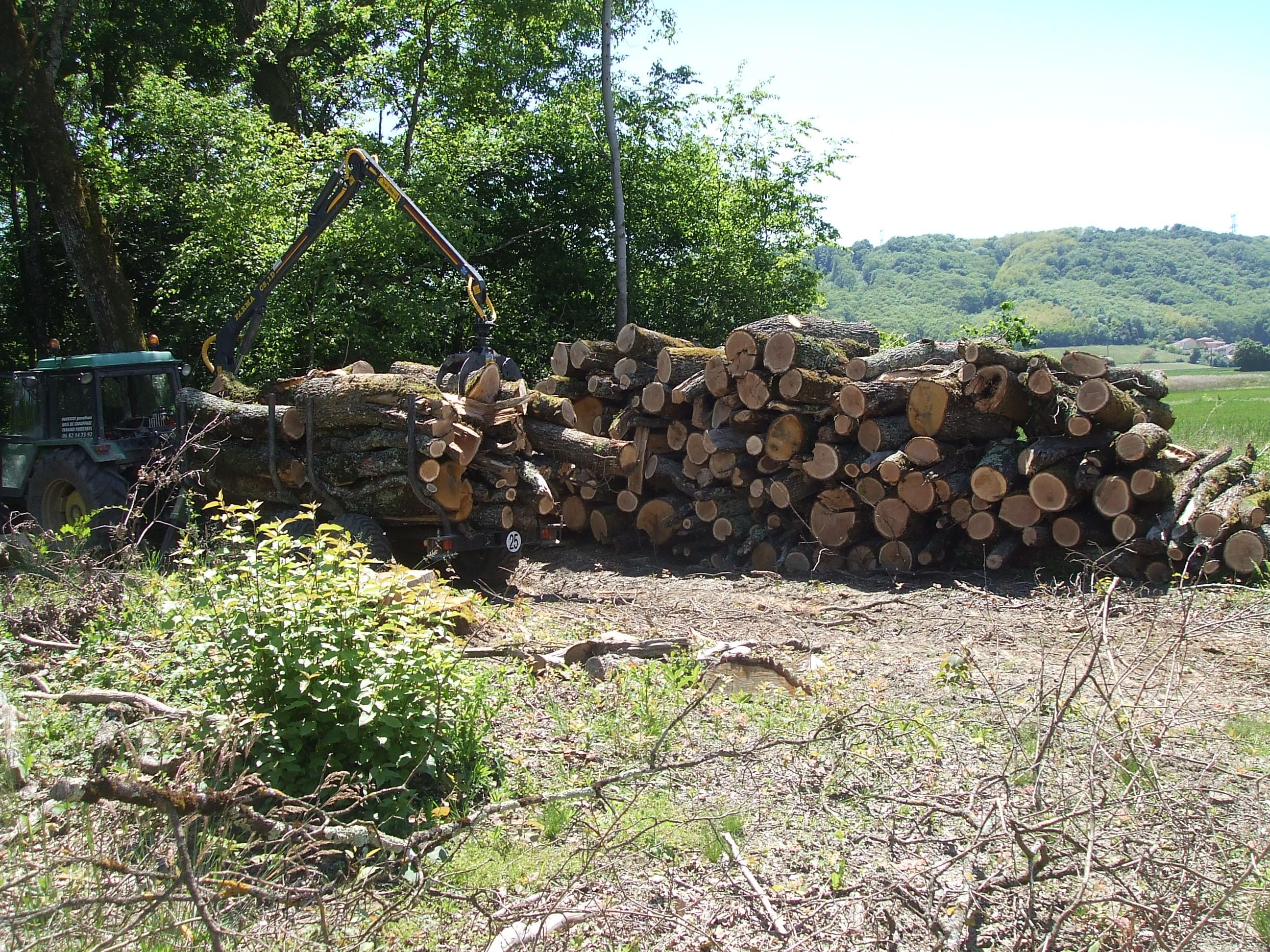 achat coupe de bois Réalisée par Jonathan Patricot